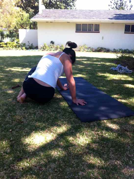 The SO Fit Club: TACFIT Sit Thru regression